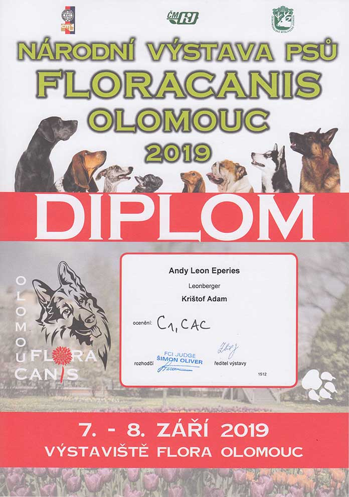 Andy Leon Eperies - 2019 Floracanis National Dog Show in Olomouc