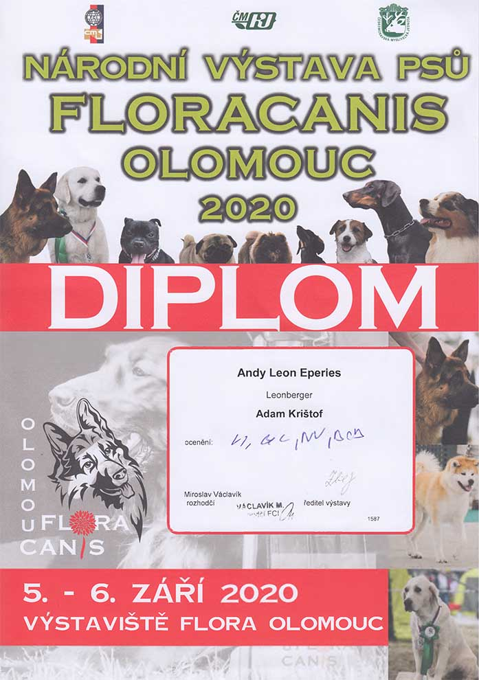 Andy Leon Eperies - 2020 Floracanis National Dog Show in Olomouc
